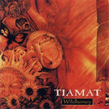 RockmusicRaider Review Tiamat Wildhoney - Album Cover